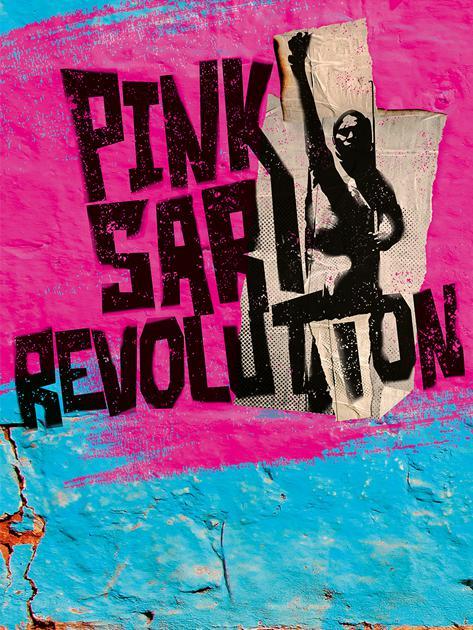 pink_sari_revolution