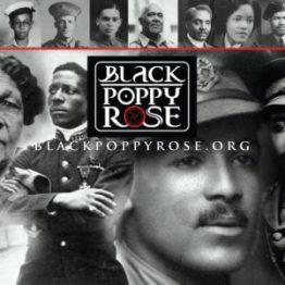 the Black Poppy