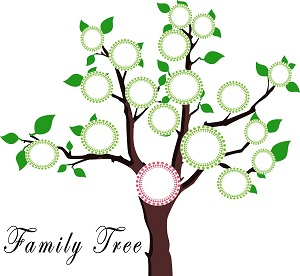 family tree-1951473_1280