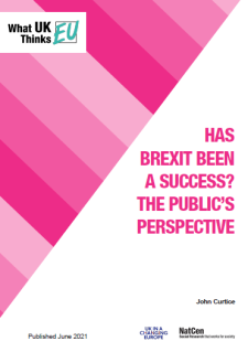 Has Brexit Been a Success The Public's Perspective